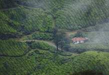 wayanad kerala india