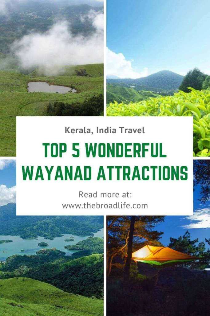 top 5 wayanad kerala places to visit - the broad life's pinterest board