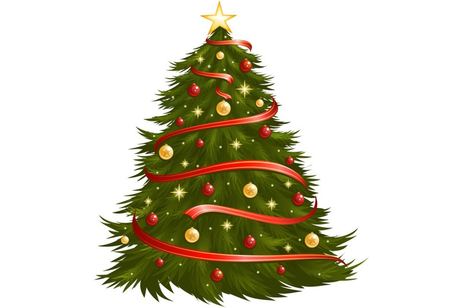 Christmas tree collection dates set for Durham Region