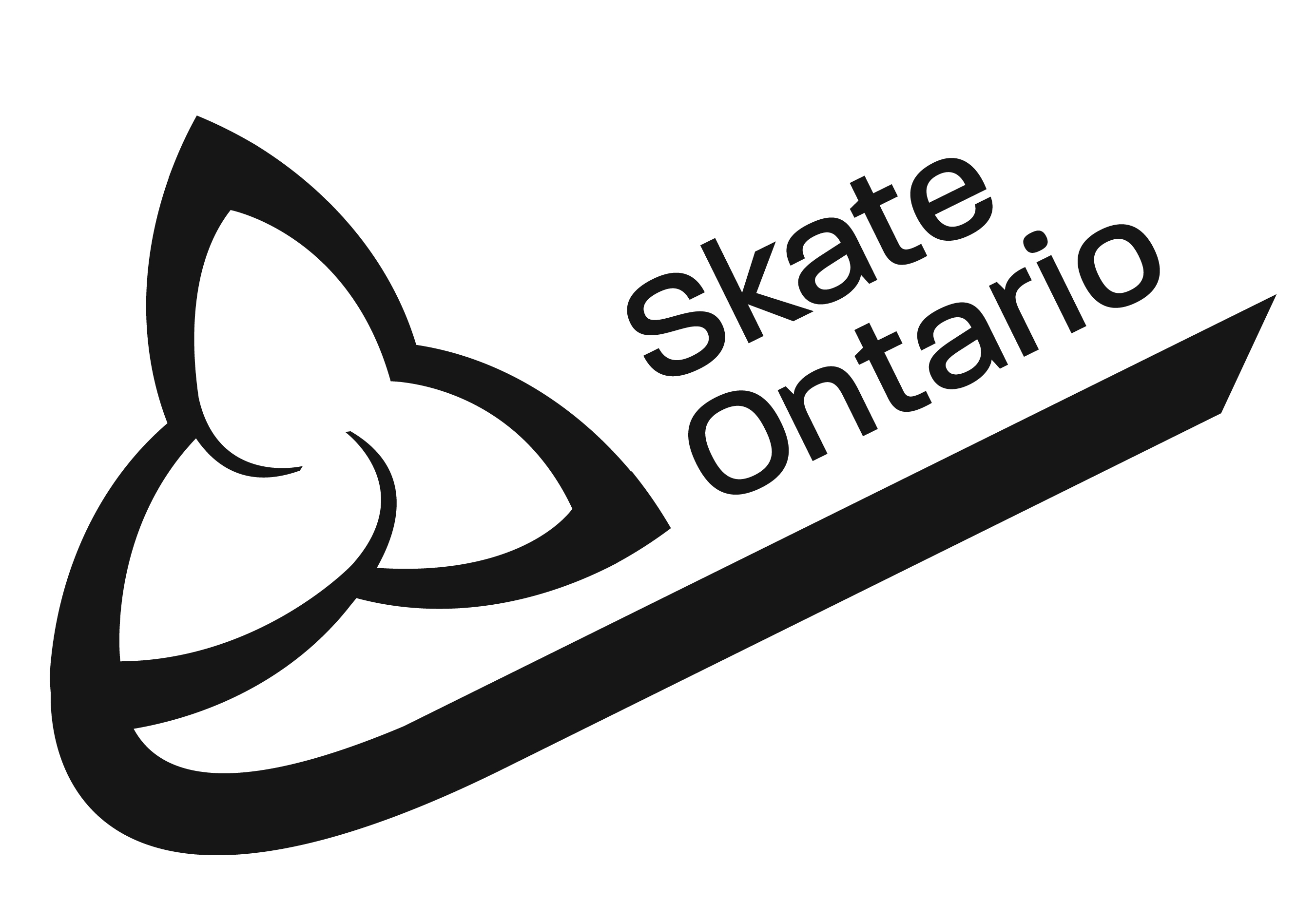 Local skaters post impressive performances at provincial championships