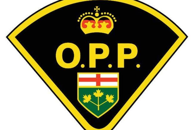 OPP cruisers collide in Kawartha Lakes