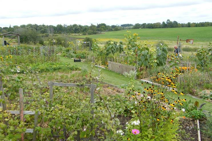 Township identifies five possible locations in Beaverton and Sunderland for community garden