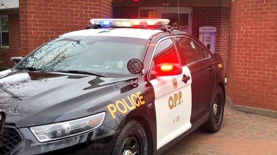 Charges laid after neighbour dispute in Fenelon Falls