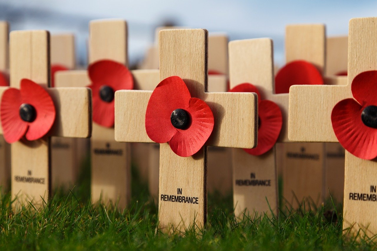 Ten quick facts on the poppy
