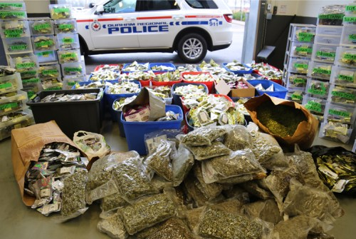 DRPS officers reportedly seize two homes, more than $2 million worth of cannabis and cash
