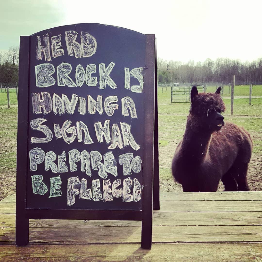 A sign war is brewin' in Brock