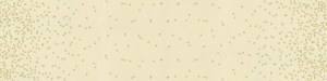 Ombre Confetti Metallic 2019 - 10807-329M