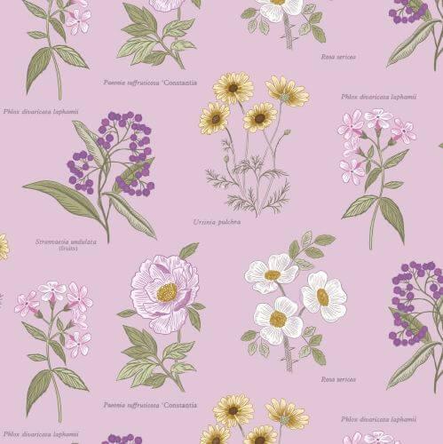 Lewis & Irene - Botanic Garden - Flowers on Lilac - A453.3