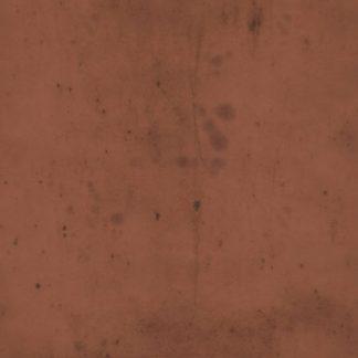 Tim Holtz - Provisions - Rust
