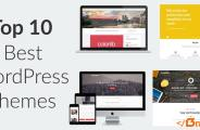 Top 10 Best WordPress Themes