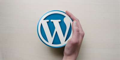 A hand touching wordpress sign