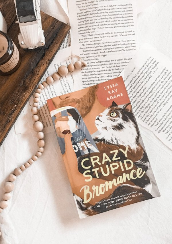Crazy Stupid Bromance by Lyssa Kay Adams | AUDIO REVIEW