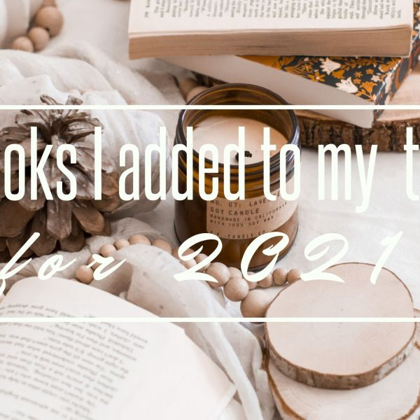 Books I added to my TBR / December 2020