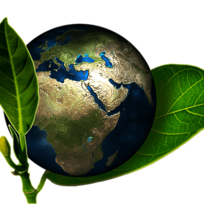 Eco-Friendly Changes You Can Make To Your Daily Life!