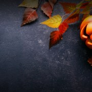 Trunk or Treat | Garden Ghost Hunt (Oct. 24-30)