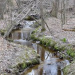 Tuckahoe State Park and Adkins Arboretum