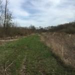 Millington Wildlife Demonstration Area and Blackiston Wildlife Area