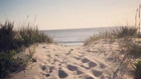 Short's Beach
