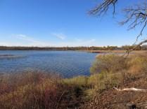 The North side of Ottawa Lake