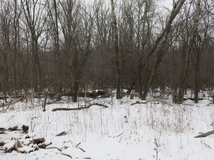 Imagine a burning pile of buckthorn in the foreground of this shot