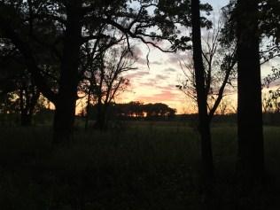 Hartland Marsh