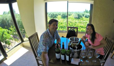 A very simple tasting room with a stunning view of the vineyards. Offers a priceless experience tasting with the owners!