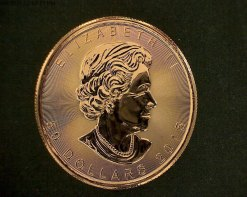 Canadian Maple Leaf 1 Ounce gold