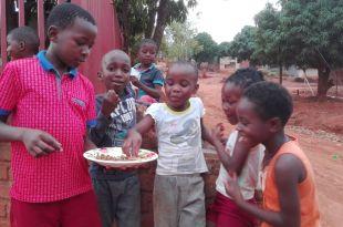 des barres protéinées aux insectes pour combattre la malnutrition en afrique
