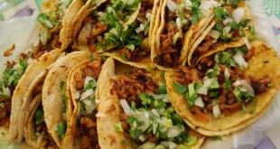 L'incroyable gastronomie du Mexique: enquête sur les 5 meilleurs insectes comestibles