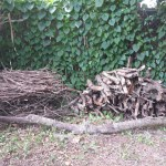my new wood pile