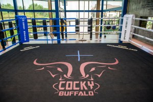 Cocky Buffalo Gym