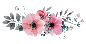 tumblr-flowers-transparent-21