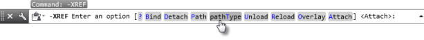 Choosing the PATHTYPE function at the command ine