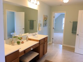 Clearwater Preserve Example Master Bathroom