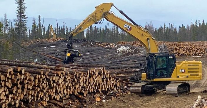 CHINA FIRST: Leftover logs from Muskrat Falls now headed to Asia