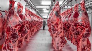 Hackers Target Meat