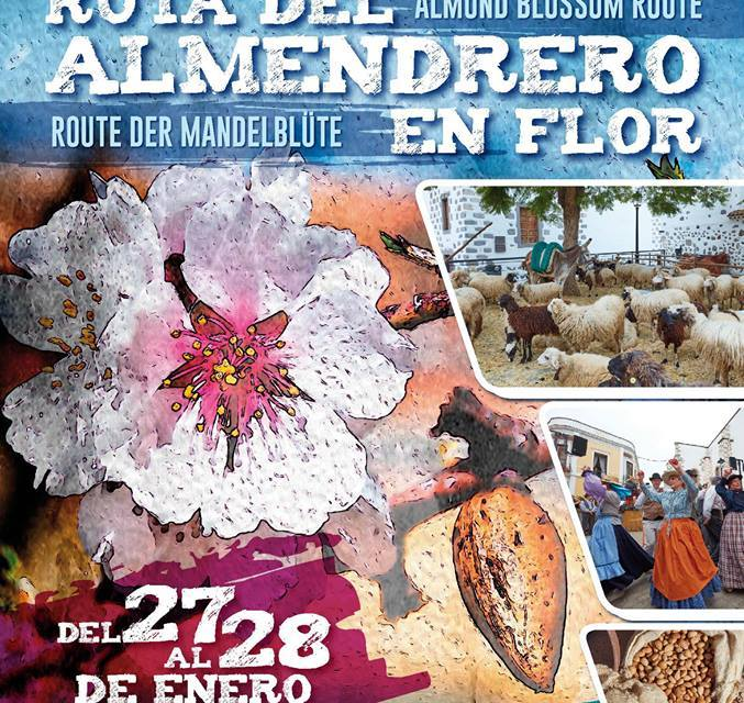 Events: Almond Blossom Route and festivities in Valsequillo 27-28 January