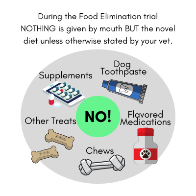 Items that should not be given during a Dog Food Elimination Trial.