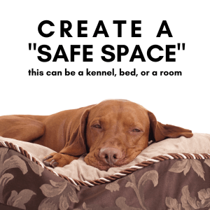 You want your dog to be comfortable and relaxed in their space while you area away.