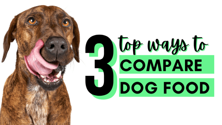 Top ways to Compare Dog Food - Title Image