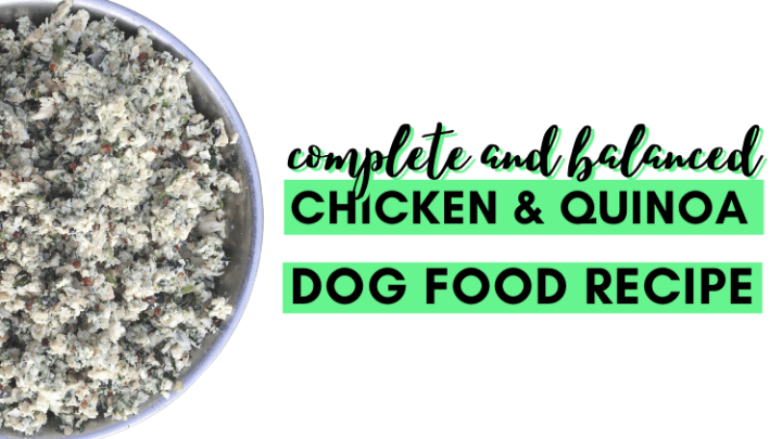 Complete and Balanced Chicken and Quinoa HomemadeDog Food Recipe