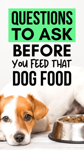 Nine Questions to Ask Before you Food that Dog Food. How to tell if a dog food is a quality product, safe, and is the most nutritious option for your pet.