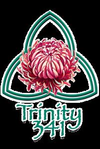 Trinity 341, LLC