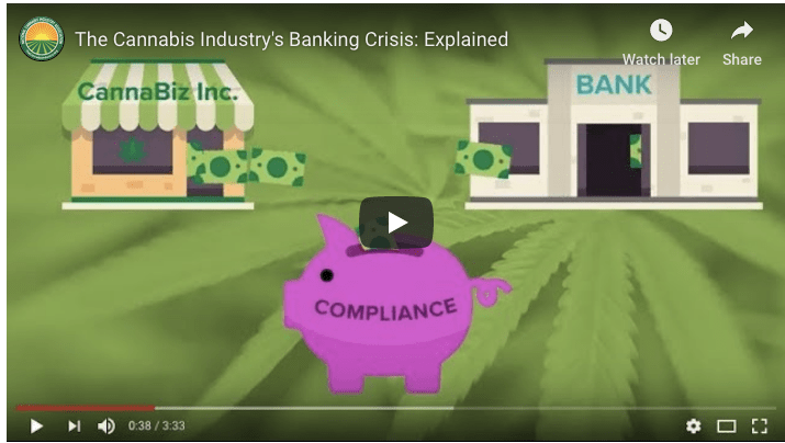 Take Action! Share This Video on The Cannabis Industry's Banking Crisis!