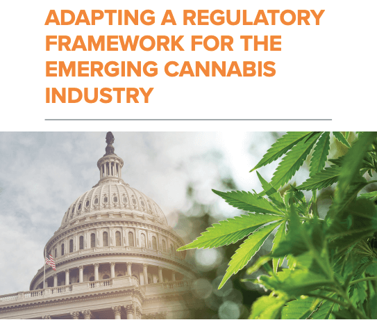 NCIA Releases Guidelines for Federal Cannabis Regulation After Legalization