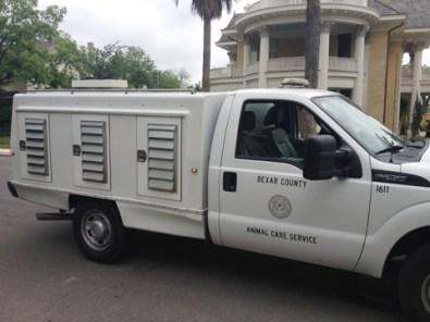 san antonio animal laws animal care service bexar county