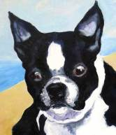 dog-paintings-boston-terrier2