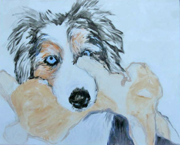Cisco Bunny australian shepherd Painting