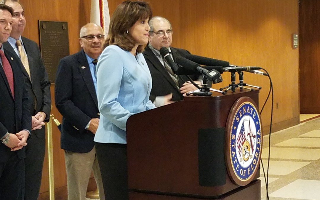 SD 40's Annette Taddeo Claims She Brought Home District True Bacon $ When She Didn't Even Bring Any Fat