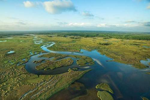 """Environmentalists are """"encouraged"""" by Gov. DeSantis' quick action on water quality plan"""